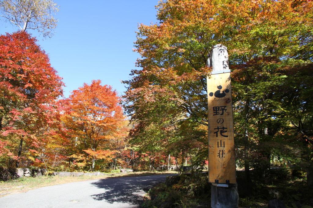 <p>日本秘湯を守る会々員</p>