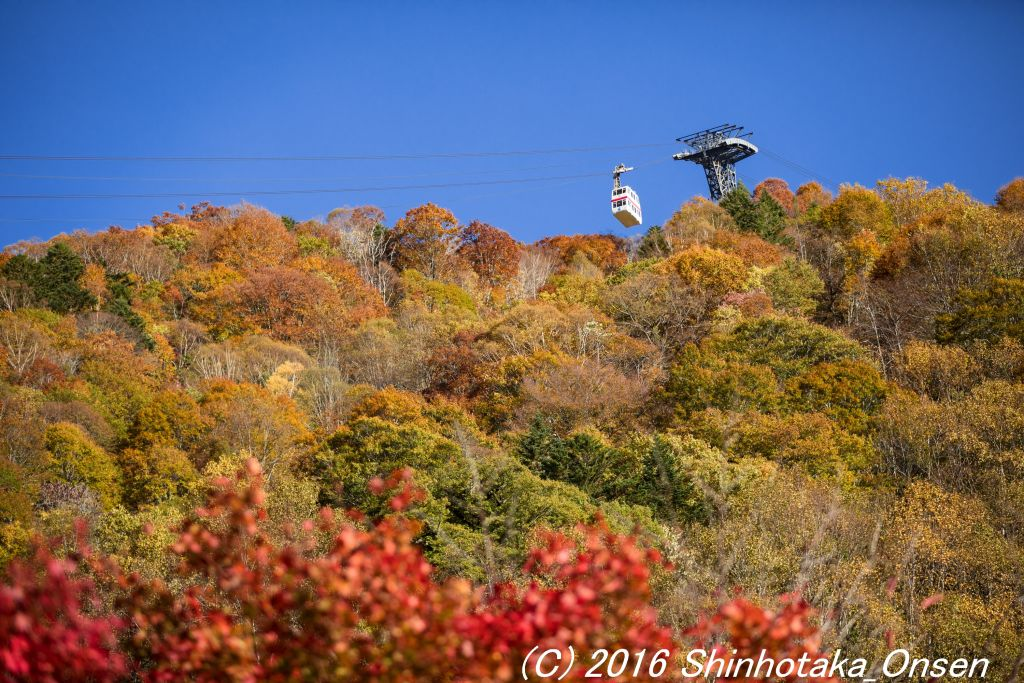 <p>秋のロープウェイ</p>